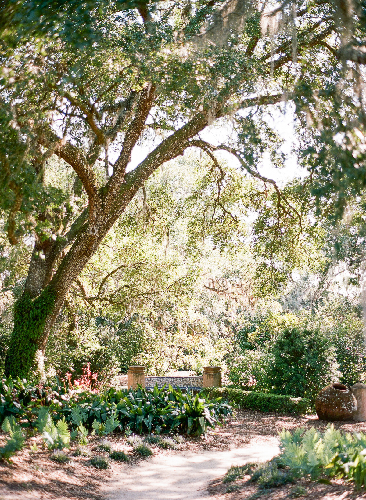 Timeless Florida Garden Engagement Session The Ganeys09
