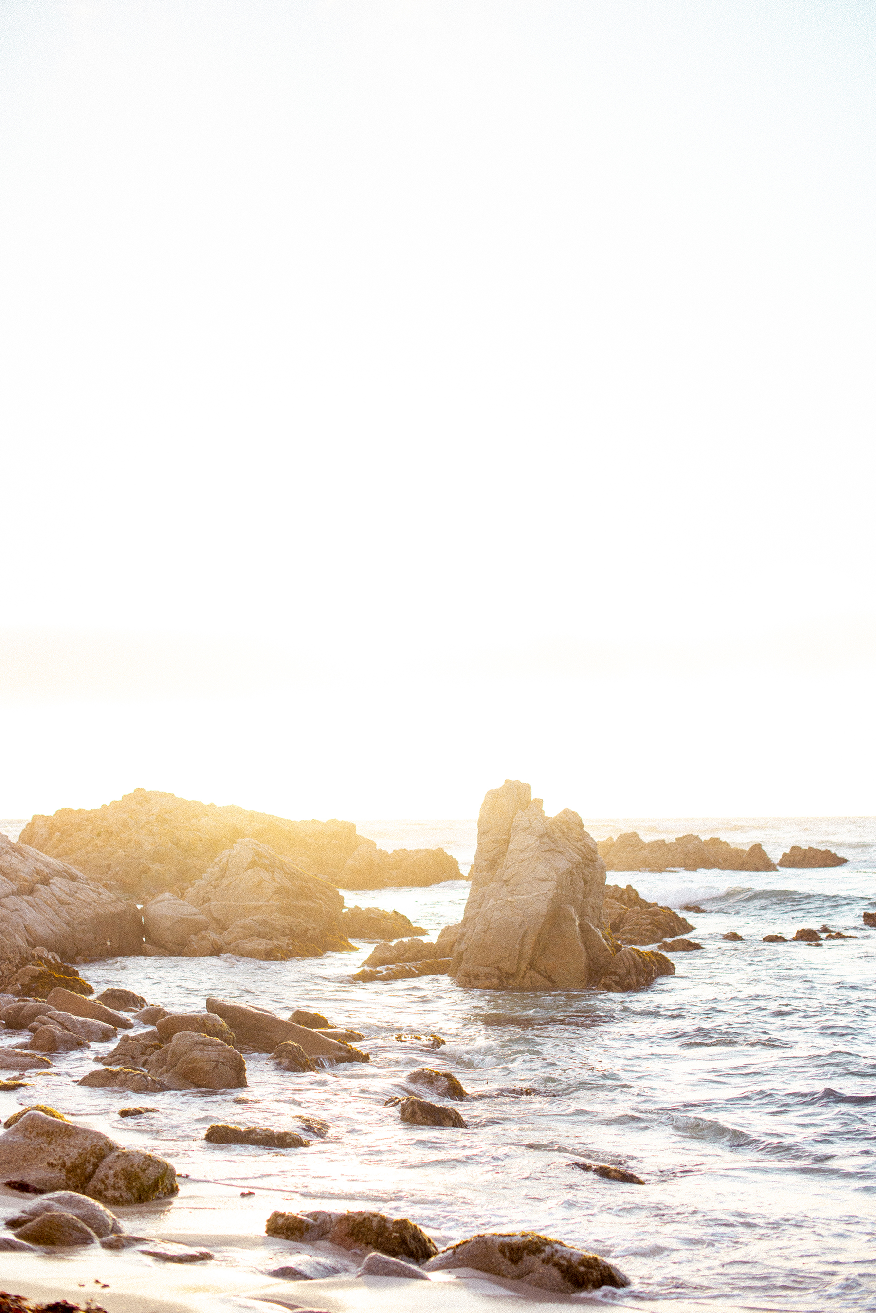 A Golden Hour Engagement Session in Monterey Sarahi Hadden01