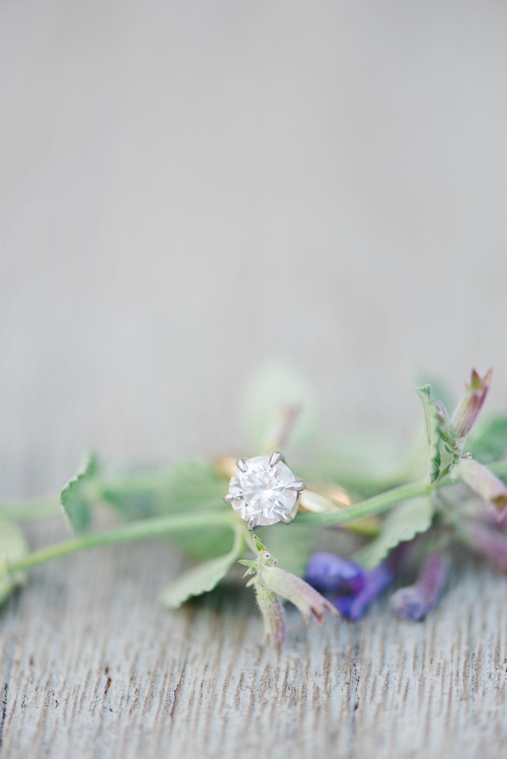kelsea-louis-engagement-photos-41